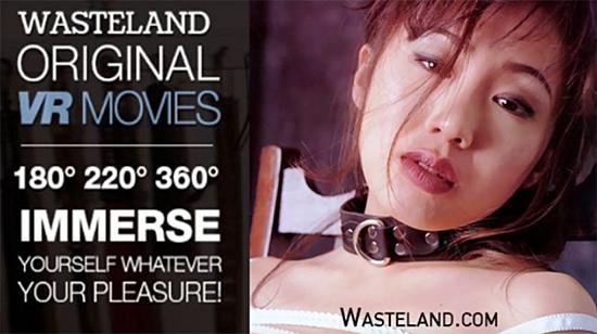 WastelandVRPassword